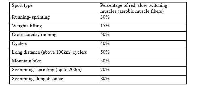 Table of muscle and sport types