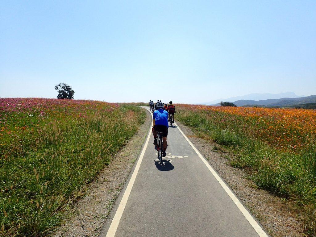 Chiang Rai Cycling Bikelah