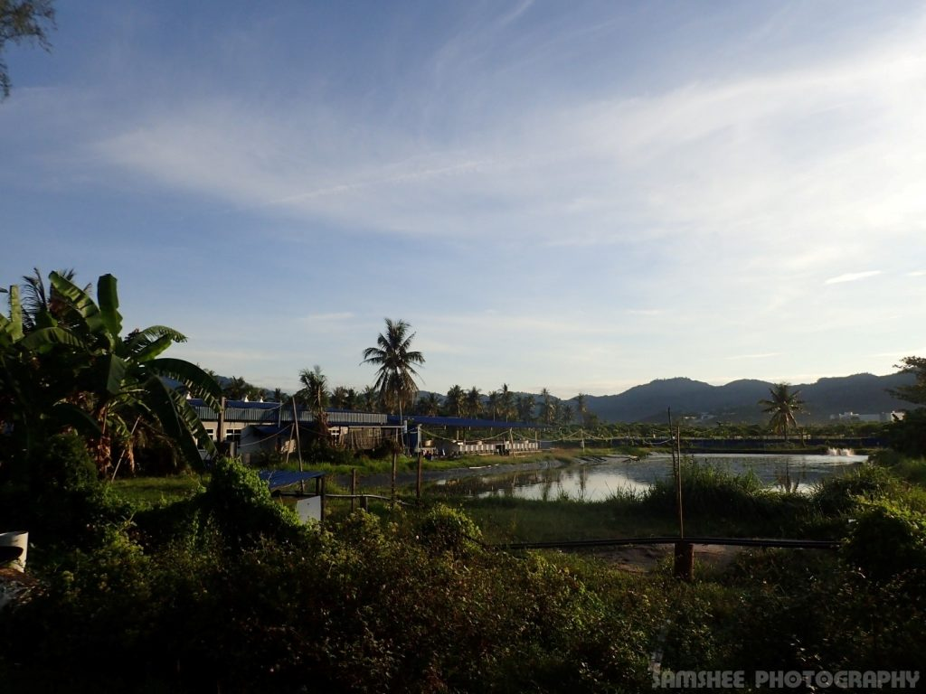 Balik Pulau Dawn Cycling
